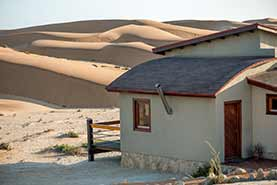 Bungalow close to the dunes